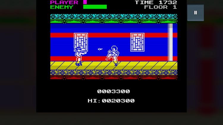 Mister Kung-Fu screenshot-5