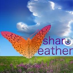 ShareWeather Sky