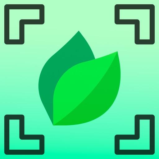 Plant by Leaf Identifier