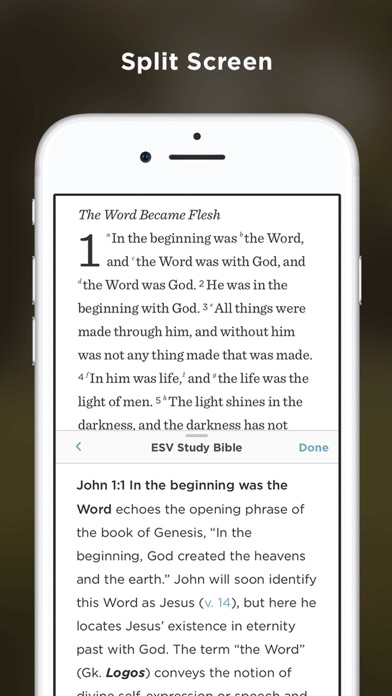 Screenshot for ESV Bible in Spain App Store