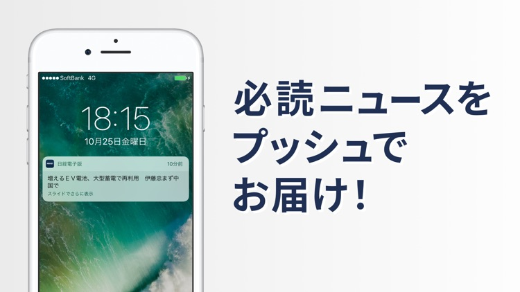 The NIKKEI online edition screenshot-5