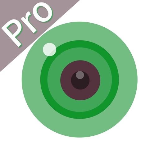 iCSee Pro