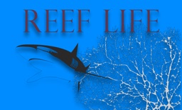Reef Life TV