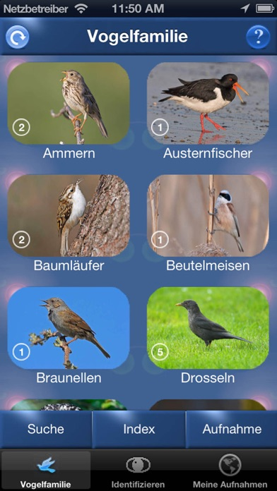 Screenshot for Vogelstimmen Id - Rufe,Gesänge in Germany App Store