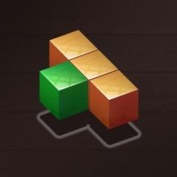 Wood Block Puzzle - Brain Game