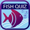 Fish Quiz 2019 Reviews