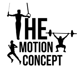 The Motion Concept
