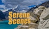 Serene Scenes Reviews