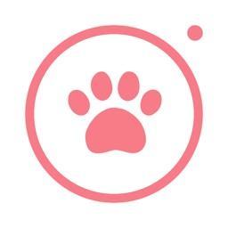 MeongCa - for dogs