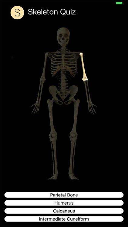 Skeleton Quiz screenshot-3