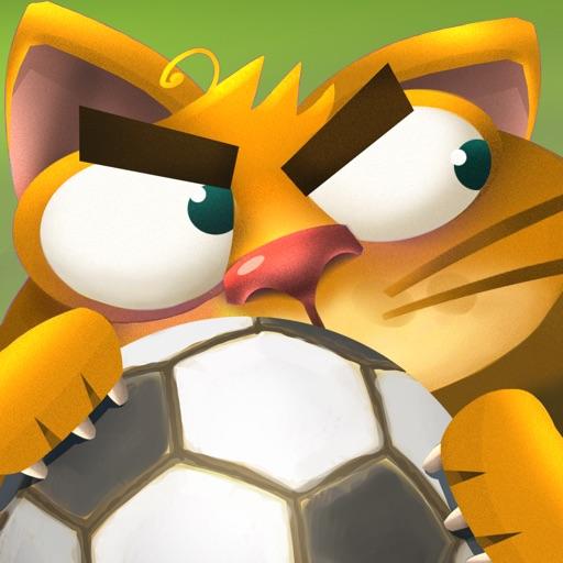 Коты: дворовые разборки
