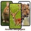 10000動物の壁紙 - iPhoneアプリ
