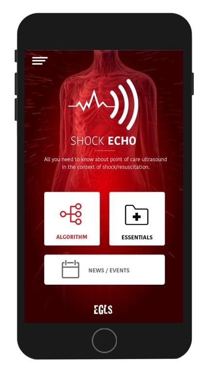 Shock-Echo