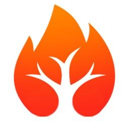 火树浏览器