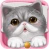 心动小猫 - 可爱宠物养成游戏