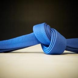 BJJ Blue Belt Requirements 2.0