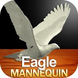Eagle Mannequin