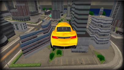 リムジン運転スタントカードライバーのおすすめ画像5