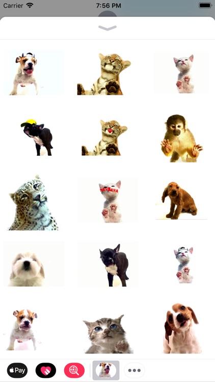 Slurp stickers for pet lovers screenshot-3