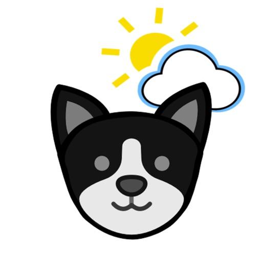 Puppy Weather Forecast