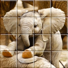 Activities of Tile Puzzle Baby Animals