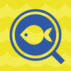B.Creation Inc. - 魚の名前を写真から検索できる人工知能「フィッシュ」 アートワーク