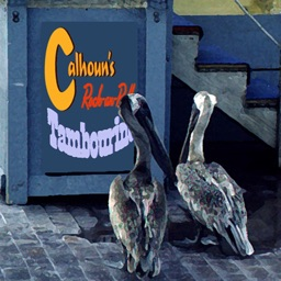 Calhoun's Cajun Rock-an-Roll