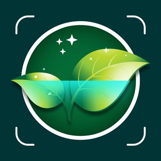 Plant ID- Plant Identification