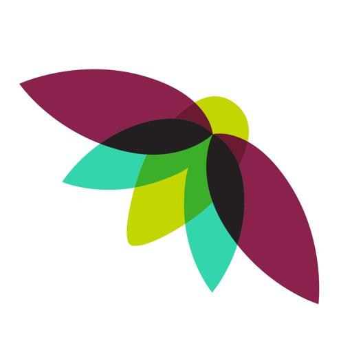2018 Firefly Music Festival iOS App