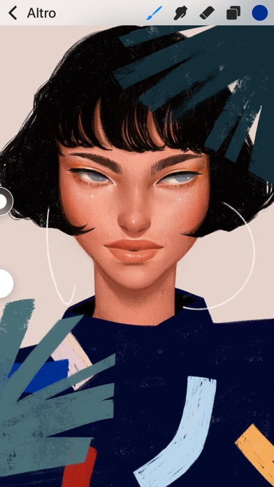 Procreate Pocket