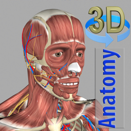Ícone do app 3D Anatomy