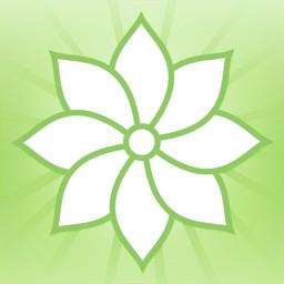 Mindfulness: TAOBH (Lite)