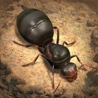 The Ants: Underground Kingdom Hack Resources Generator online