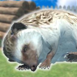 Hedgehog Friends
