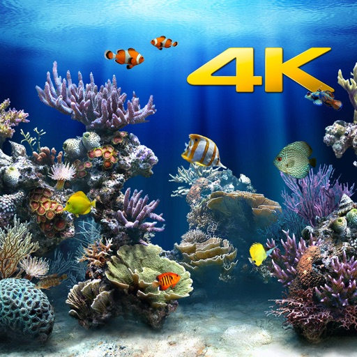 Aquarium 4K √ icon