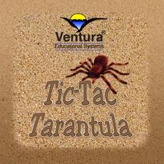 Tic-Tac-Tarantula