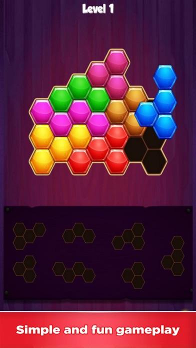 Block Hexagon 1010 Fun Screenshot on iOS