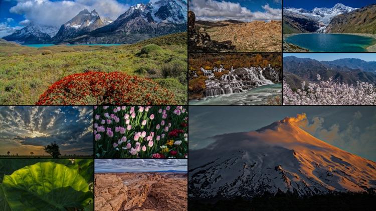 WorldView: Nature screenshot-3