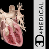 Heart Pro III - iPhone-3D4Medical from Elsevier