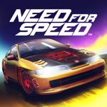Need for Speed: NL Racing