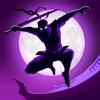 Fansipan Limited - Shadow Knight Premium Fighting artwork