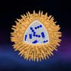科学 - 小宇宙3D:細菌、ウイルス、原子...