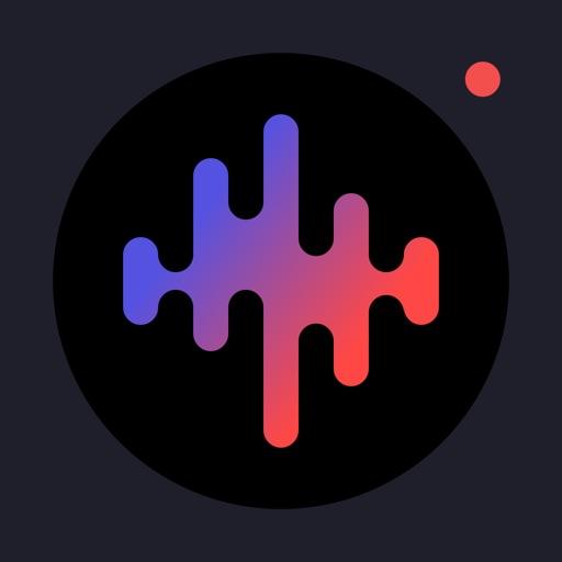 ボイスレコーダー Pro - 録音アプリ