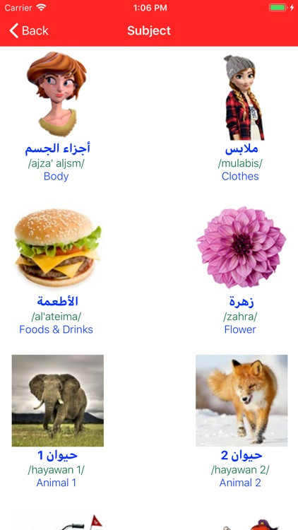 Learn Arabic Pro
