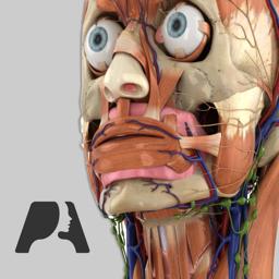 Ícone do app Pocket Anatomy (2018)