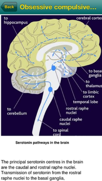 Rapid Diagnosis-Mental Health screenshot-3