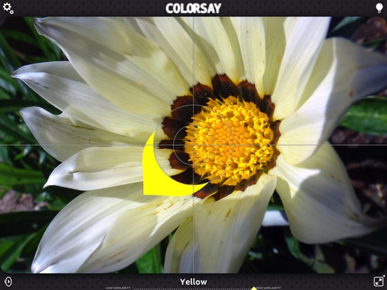 ColorSay Screenshots