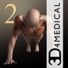 iMuscle 2 - iPhone Edition - iPhoneアプリ