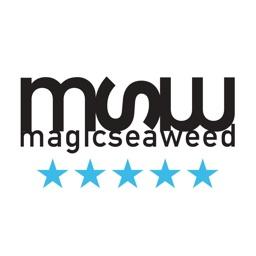 MSW Prévisions Surf
