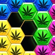 Activities of Hexa Weed - hemp block puzzle